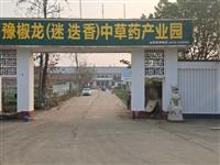淮滨县的日新集团和光明家具厂