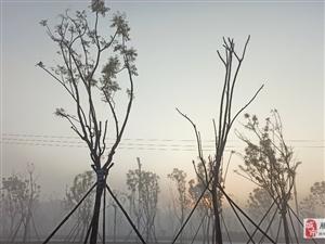 腾冲的清晨,雾气漫漫,刚好遇到日出!那一缕光温柔了我一天!