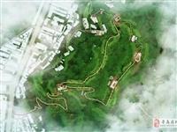 点赞!寻乌即将新增一个山地生态景观公园,我们一同来期待~