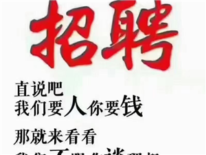 东台城东新厂招气保焊焊工数名联系电话18361646639