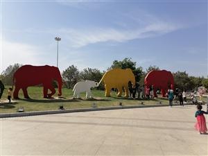 本该陪着孩子好好玩玩,好好地走一走,看一看,欣赏绿博园里的风景。此时,到这里游玩的人挺多的