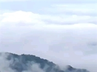 九九重阳登高!大山深处自然美,云雾缭绕人间仙境!