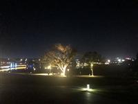 夜晚的湖滨大道