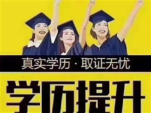 提升学历选哪个专业的人多