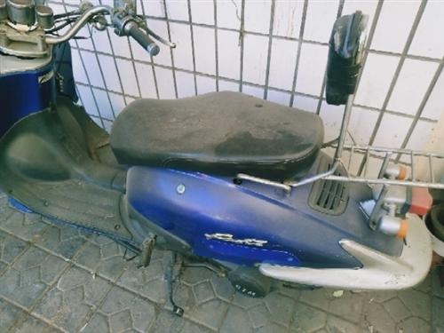 出售踏板摩托车,五百元,不还价,有要的联系!
