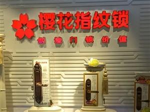 樱花智能锁海南总代理批发钢制室内门 原木门