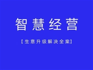 2021風口項目,微信支付寶智慧數字經營運營商招募