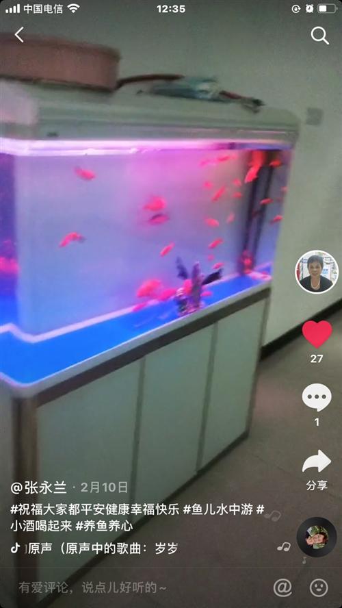 老家近期要拆迁有台鱼缸要卖,给钱就卖!还在电脑一台,一起拿走可以优惠!