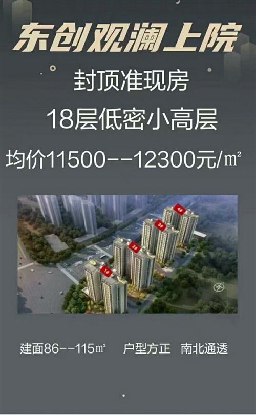东创观澜上院 咨询13933881624同微86平套价99万