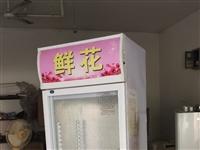 闲置雪鸭保鲜柜出售,功能正常