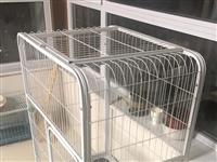 闲置猫笼子便宜卖,买来不到半年,因家里不让养猫所以扔在那了,在家里也占地方,有想要的可以联系我,便宜...