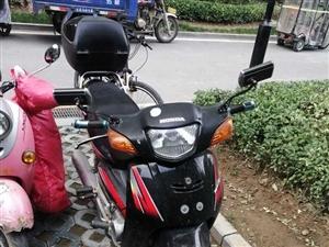新大洲本田弯梁摩托车,一脚就着,便宜出售