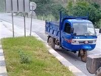 五征柴油三轮车,开了一年,现外出打工,需要转让,价格可议