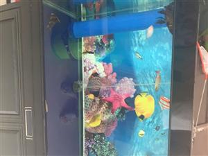 一米五的鱼缸,水泵都是新的