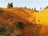 上都一份已开好梯带果山转让,可种520株,环山有公路,配大型水池,打药池,年限28年 价格面议,15...