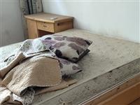 角尺湾,如图所示的旧床,还有旧沙发,全部免费送,自提,仅限今天