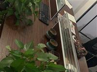 四人位办公桌两张、买时1650、用了两年、低价转让