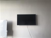 电视挂上没用