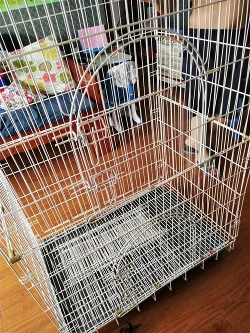 三层猫咪别墅,用了一个月猫咪就送人了