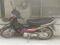本田100摩托车,质量完好。因用不着,闲置,白菜价处理,价格面议。(手机摄像头摔坏了,照片拍得不清楚...