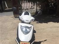 求購二手踏板燃油摩托車,價格1000--2000元,謝謝!