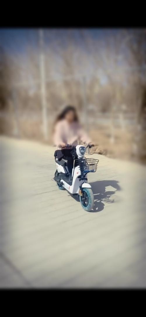 男女代步小电车~9.9新~