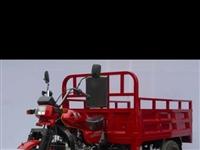 本人急購燃油踏板式三輪車一輛,外觀不限,能電啟動開走就行,要求手動離合1.5米車箱