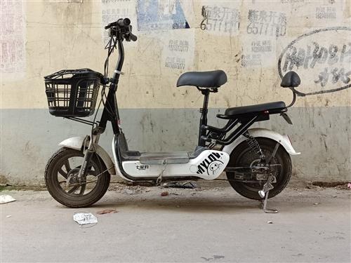 自行车款式电动车,小巧玲珑电池完好,适合上学上班骑行,有意者可以过来看看。