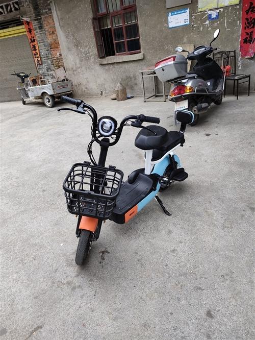 低价出售**爱玛电动单车(才买1个月)有意者联系13310750825   非诚勿扰