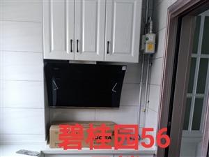 全瓷厨柜定做灶台门