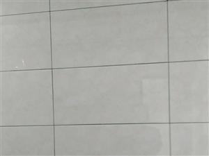 小祁專業瓷磚美縫