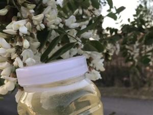 农家自产自销蜂蜜