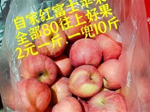 自家紅富士蘋果,80往上好果