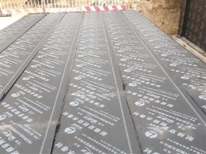 雄安雄县容城安新防水施工防水堵漏