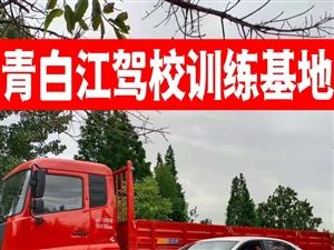 青白江驾校,暑假报名优惠中。