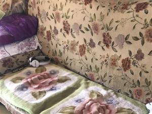 想換沙發坐墊
