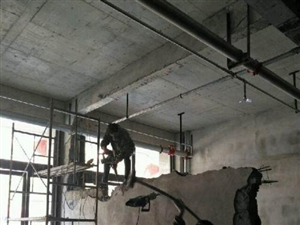 专业砸墙,小时工,混凝土振棒。