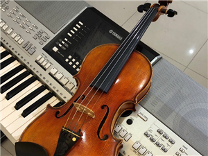 小提琴家教  小提琴一对一    精品小班课