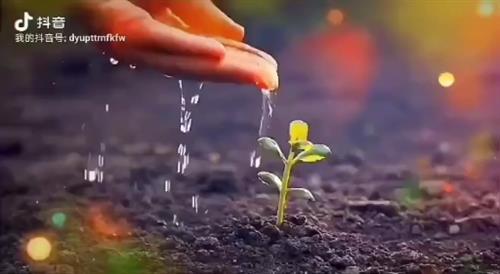 春既给人以新的生命,也给人以新的希望。