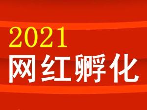 2021�V�h�W�t孵化