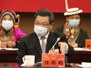 任振鹤参加陇南代表团审议:坚定不移推动生态陇南绿色崛起