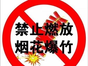 宿州市人民政府�P于禁止�N售和燃放��花爆竹的通告