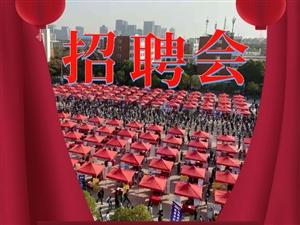 3月6日(周六)在郑州市东风路百脑汇广场有场提供8350个岗位的亚愽国际娱乐会