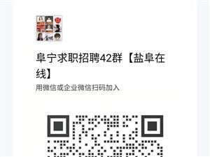 在阜宁免费找工作,每天汇集阜宁最新求职招聘信息!