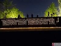 枝江人才广场及周边夜景