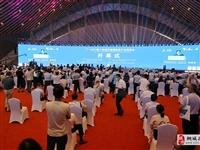2021第十四届安徽国际茶博会6月18日开幕 桐城6家茶企参展