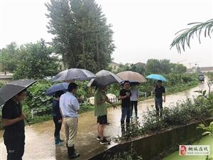鲟鱼镇:党员干部冲锋在前 积极应对强降雨
