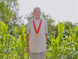 杨孝琴:一枚沉甸甸的纪念章