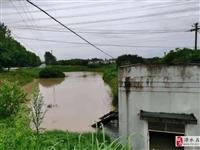 """7月27日,台风""""烟花""""汹涌来袭,无想寺社区内水位急剧上升"""