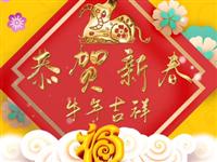 陇南视线:恭贺新春,牛年吉祥!